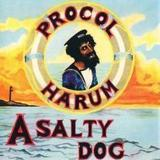 A Salty Dog's album cover