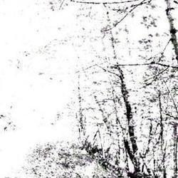 Agalloch Faustian Echoes