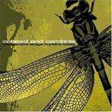 Everything Evil by Coheed and Cambria