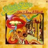 Only a Fool Would Say That by Steely Dan