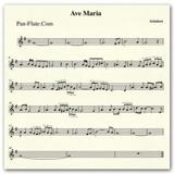 Print and download Ave Maria Violin sheet music in pdf. Learn how to play Schubert songs for Violin online