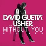 Without You by David Guetta