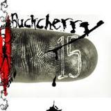 Sorry by Buckcherry