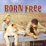 Print and download Born Free sheet music in pdf. Learn how to play John Barry songs for Xylophone, Trumpet, Trumpet, Xylophone, Trumpet, French Horn, Trumpet, French Horn, Trumpet, Xylophone and Xylophone online