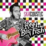 Take On Me by Reel Big Fish