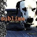 Same in the End by Sublime