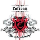 I Will Never Let You Down by Caliban