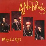 What's Up? by 4 Non Blondes